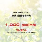 ようこそキャンペーン 1,000ポイントプレゼント